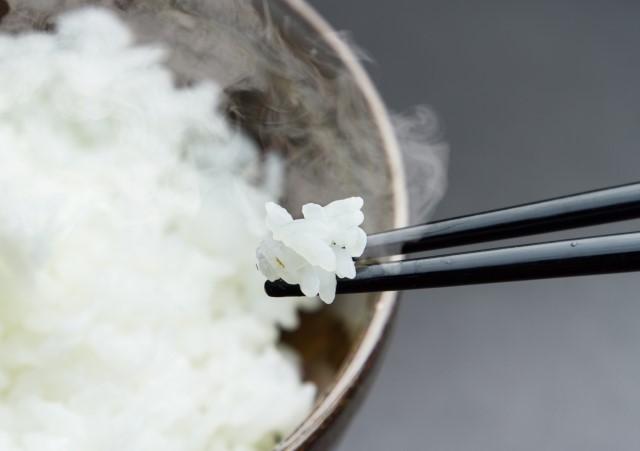 ふっくらご飯を箸で掬う画像
